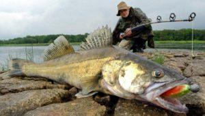 Sportfischerprüfung